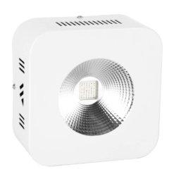 LED Edison E300W