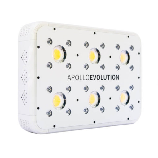Apollo 6 LED